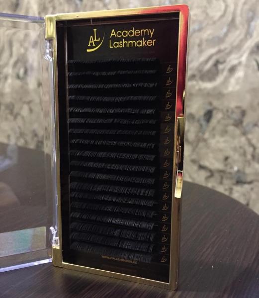 Ресницы Микс (С-изгиб) 0.07,0.10 (D-изгиб) 0.07,0.10  Академия